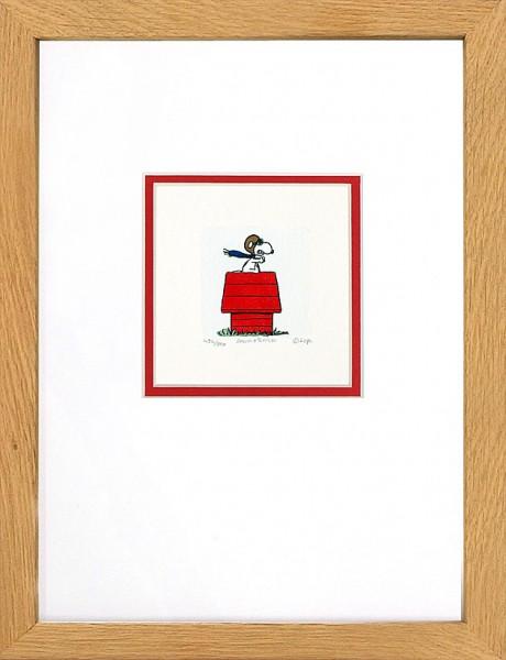 "Peanuts - ""Red Baron"""